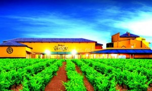 Hotel-Chateau-Vinasoro_Hunger-culture